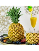 STAMPO ANANAS TROPICALE IN SILICONE KAREN DAVIES